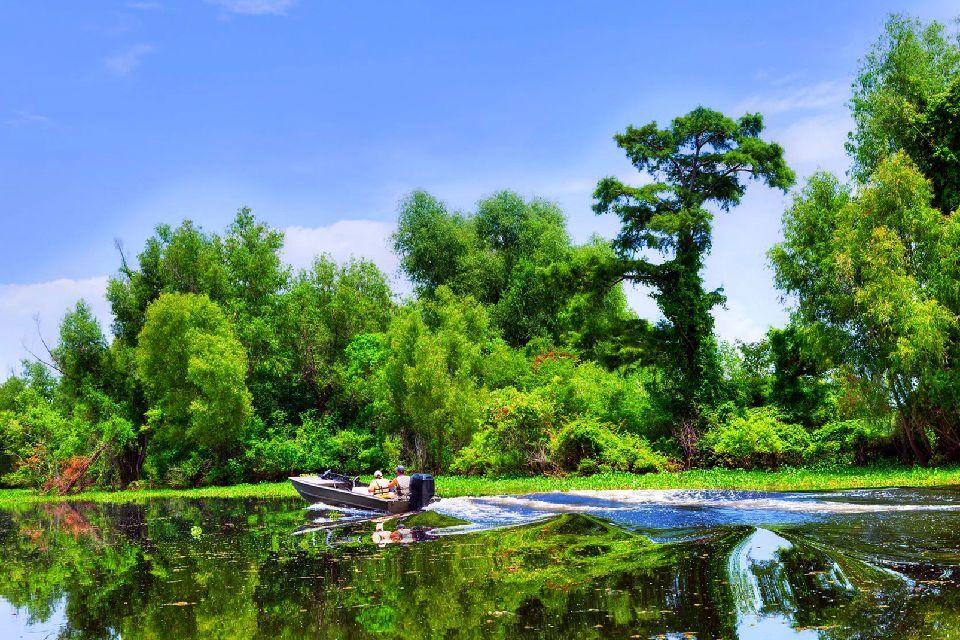 Les bayous de Louisiane , Une promenade dans les bayous , Etats-Unis