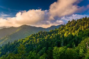 Great Smokey Mountains National Park , United States of America