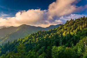Le parc national des Great Smoky Mountains , Etats-Unis