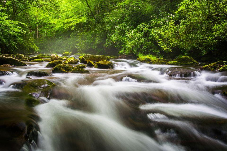 Resultado de imagen para Parque nacional de las Grandes Montañas Humeantes