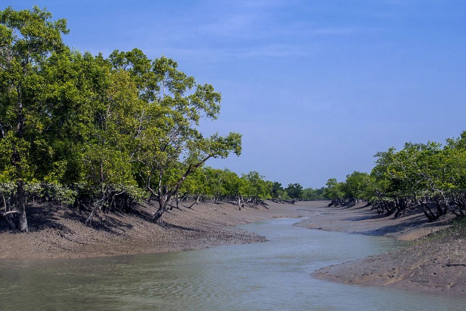 Los Sunderbans en Bengala Occidental , India