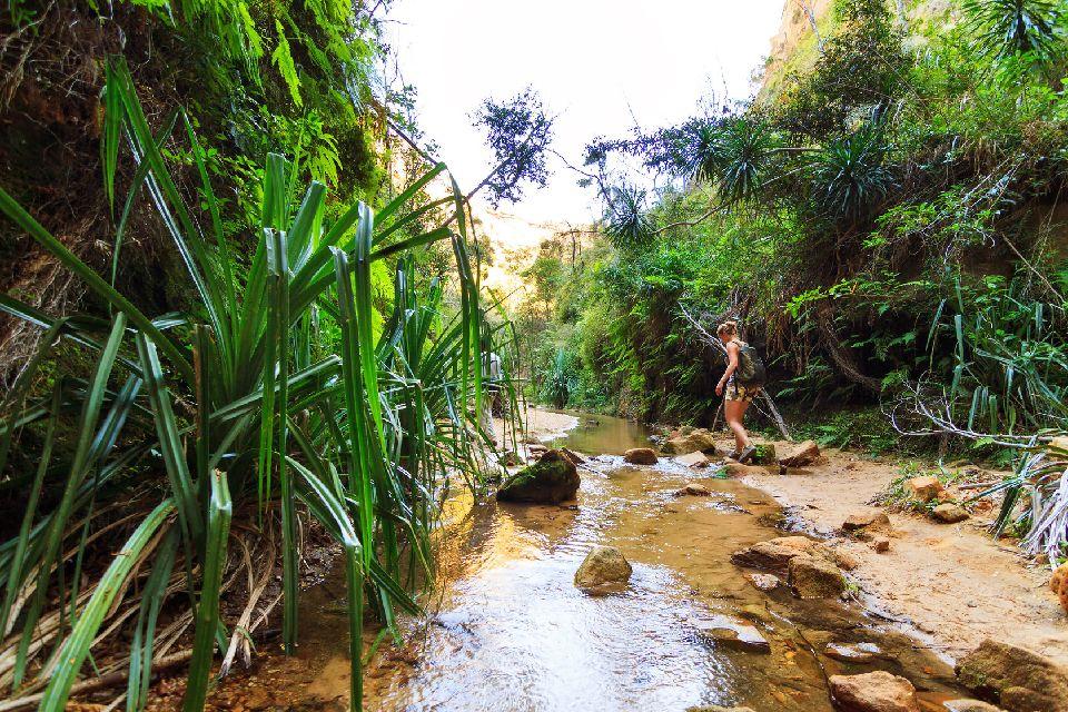 La Route du Sud , La variété, mot clé de la Nationale 7 , Madagascar