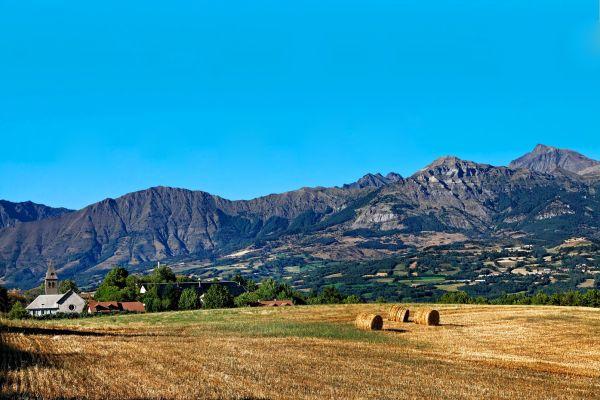 , Pays des Ecrins, The fauna and flora, Provence-Alpes-Côte d'Azur