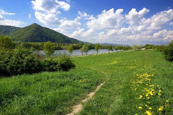 Les berges du Danube , Austria
