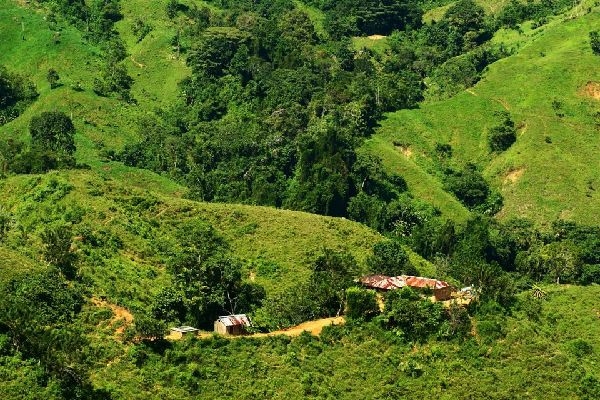 The Sierra Nevada de Santa Marta , The foothills of the Sierra Nevada, Colombia , Colombia