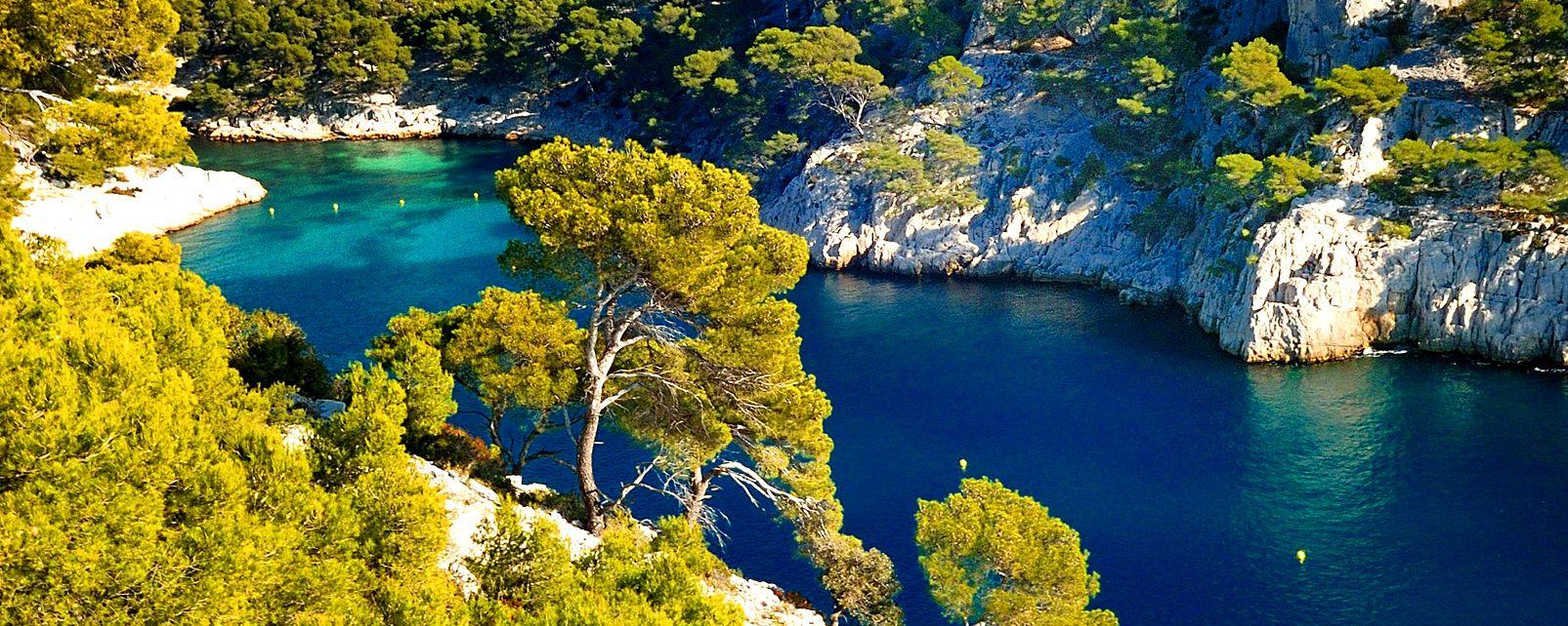 La faune et la flore, Cassis Marseille Provence Alpes Côte d'Azur France Europe Calanque Port-Pin verdure montagne mer
