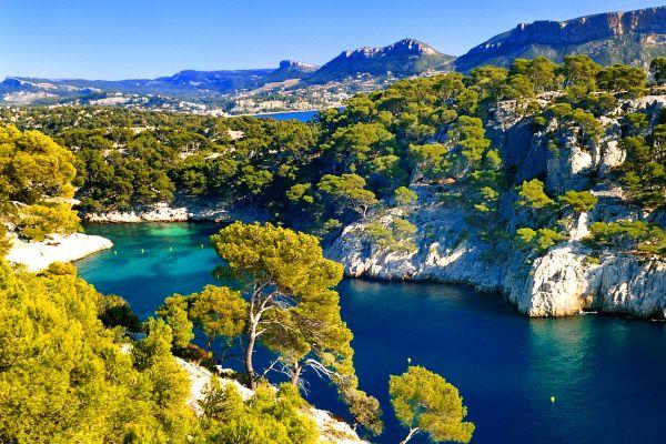 , La flore des Calanques de Marseille, The fauna and flora, Provence-Alpes-Côte d'Azur