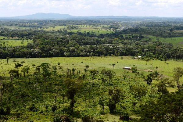 The region of Llanos , The region of Llanos, Colombia , Colombia