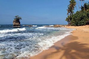 The Pacific Coast , The Pacific Coast of Colombia , Colombia