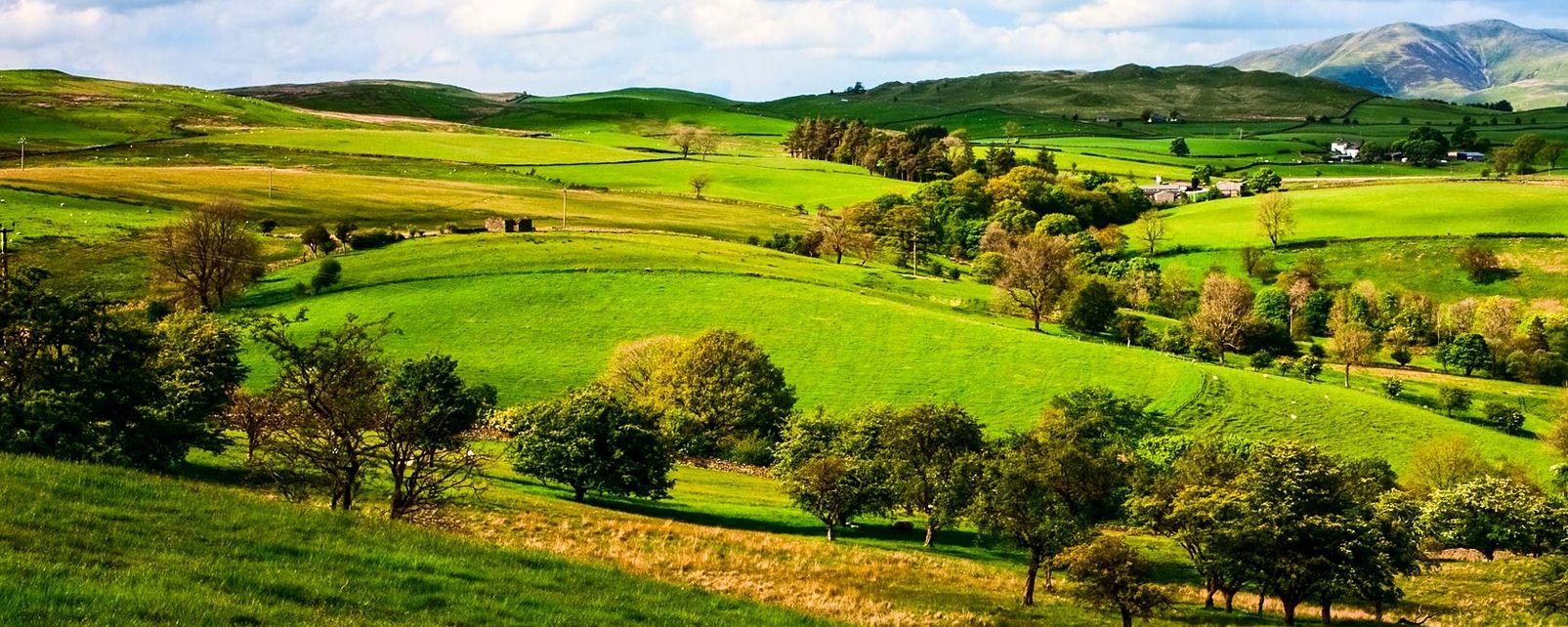 The Yorkshire Dales , United Kingdom