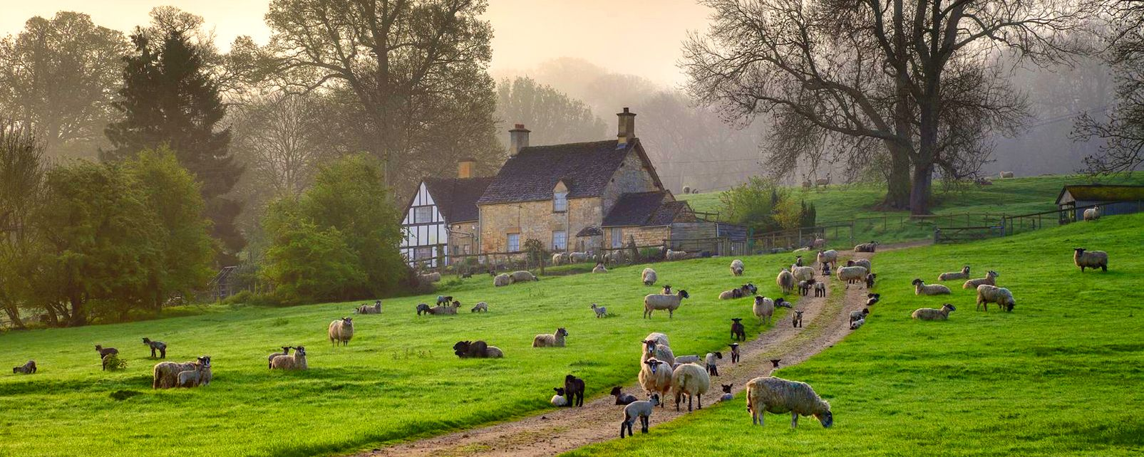 The Cotswolds , Royaume-Uni