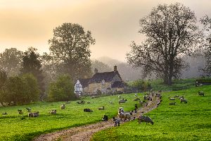 The Cotswolds , United Kingdom