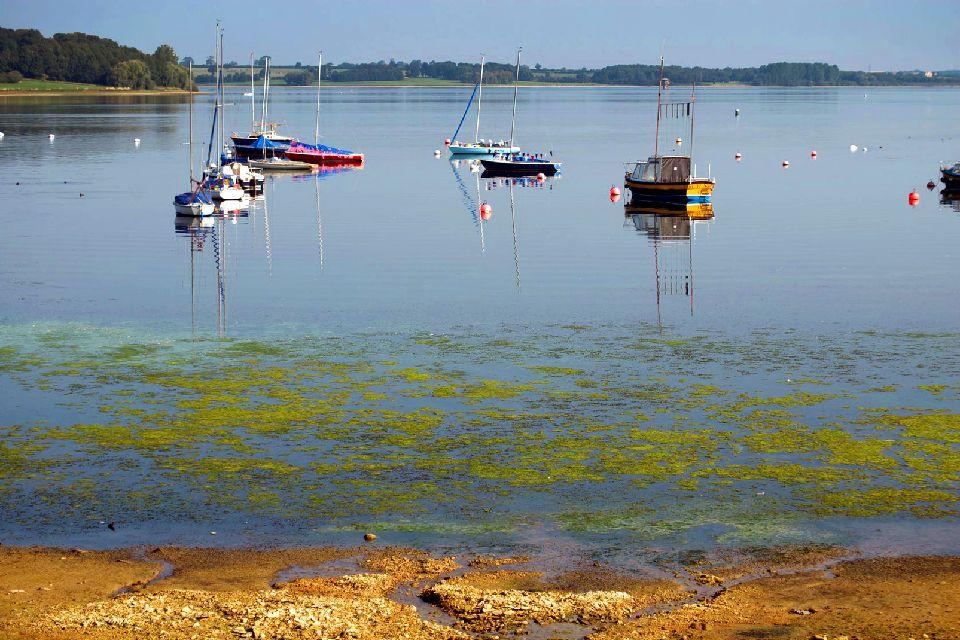 Rutland Water Nature Reserve , United Kingdom