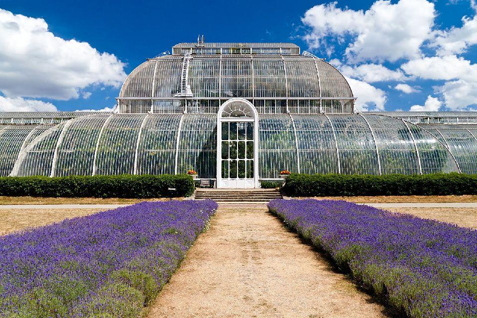Jardins royaux de Kew , Palm House , Royaume-Uni