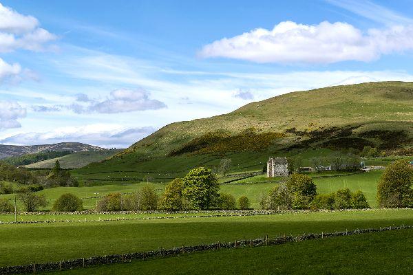 The Angus Glens , United Kingdom