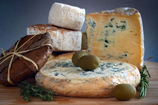 fromage, fourme, auvergne, france, ambert