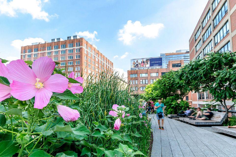La High Line , Etats-Unis