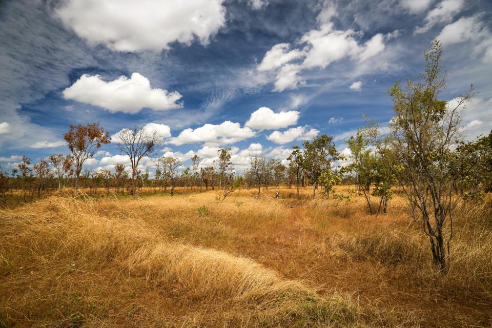 Kakadu National Park , Australie