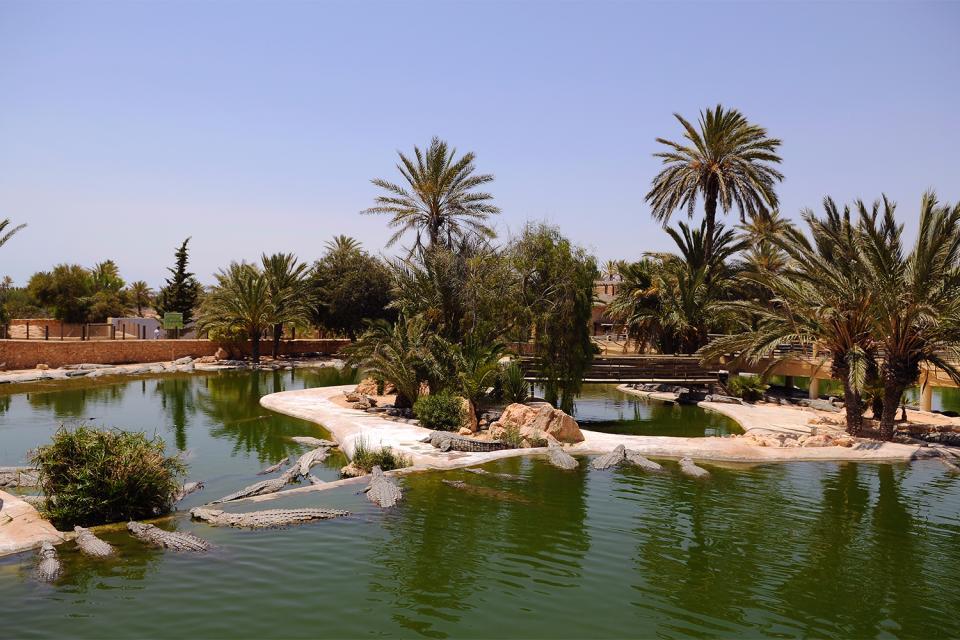 Djerba Explore , Tunisie