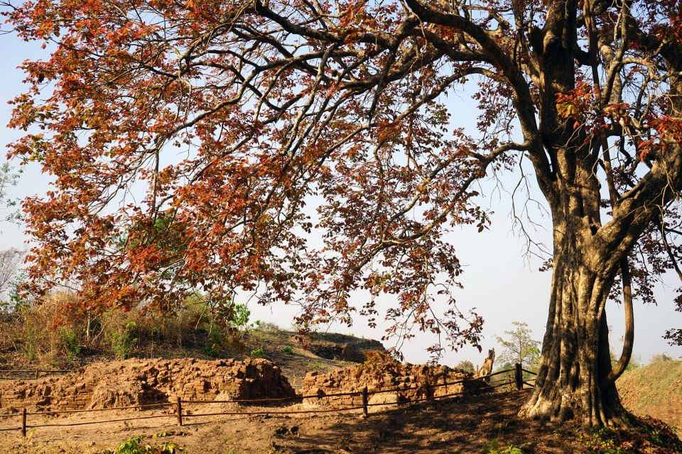 Les arts et la culture, Pyu, birmanie, myanmar, antiquité, ruines, vestige, Sri Ksetra, Thayekhittaya, mur