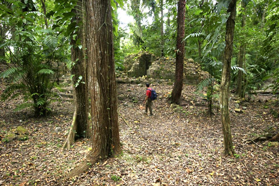 Le site archéologique de Ceibal , Guatemala