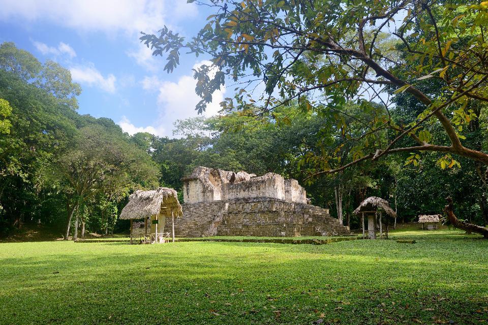 Le site archéologique de Ceibal , Quand la nature reprend ses droits , Guatemala