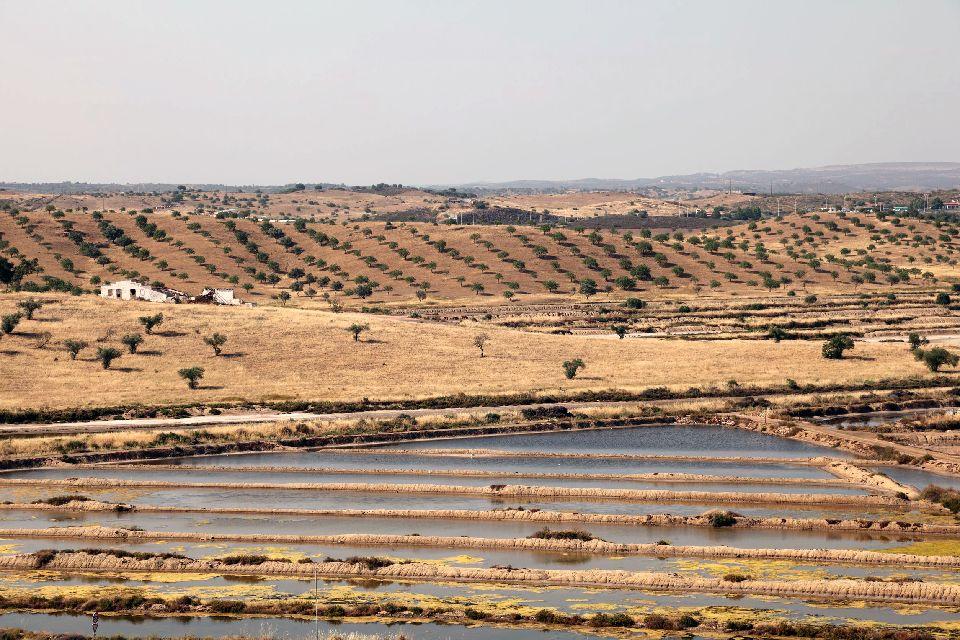 La réserve de Sapal , Portugal