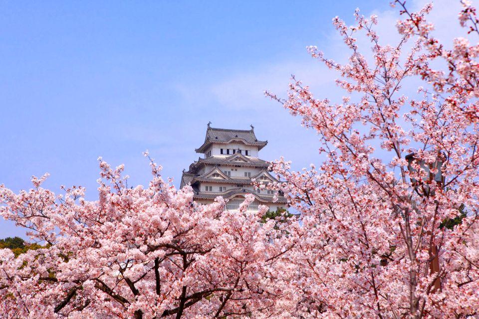 Le château de Himeji , Hakujoro ou château du héron blanc , Japon