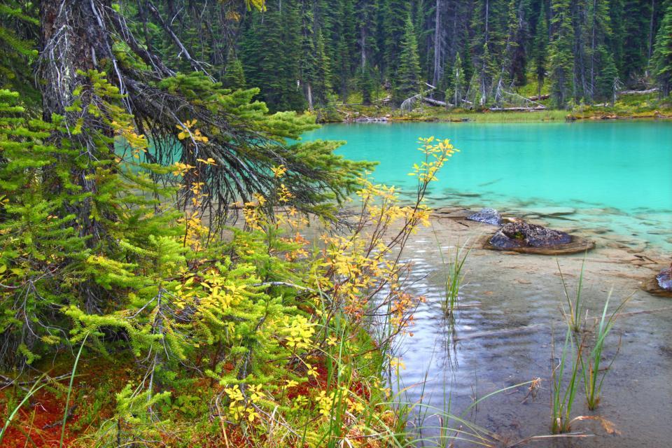 Le Parc national Yoho , Canada