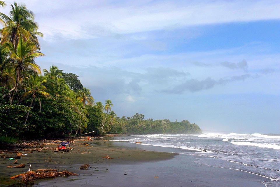 Il Parco Nazionale di Cahuita, La fauna e la flora, La spiaggia nera di Cahuita, Costa Rica