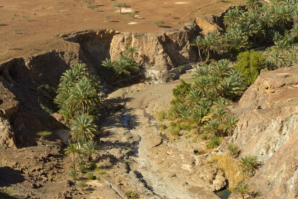 Systèmes d'irrigation aflaj , Sultanat d'Oman