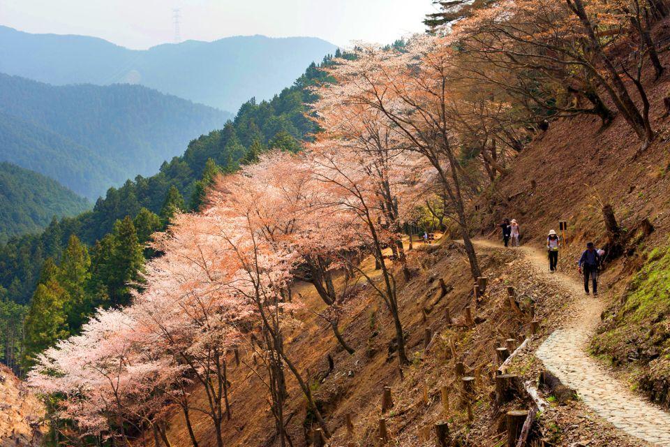 Le Mont Yoshino , Randonnée au Mont Yoshino , Japon