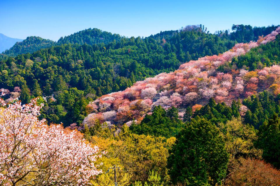 Le Mont Yoshino , Chemin de pèlerinage , Japon