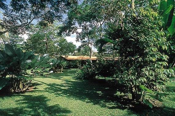 , L'azienda agricola floreale di La Matina, La fauna e la flora, Costa Rica