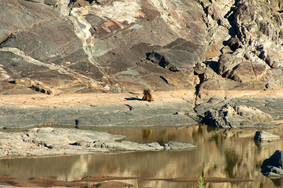 First River Canyon , Namibie