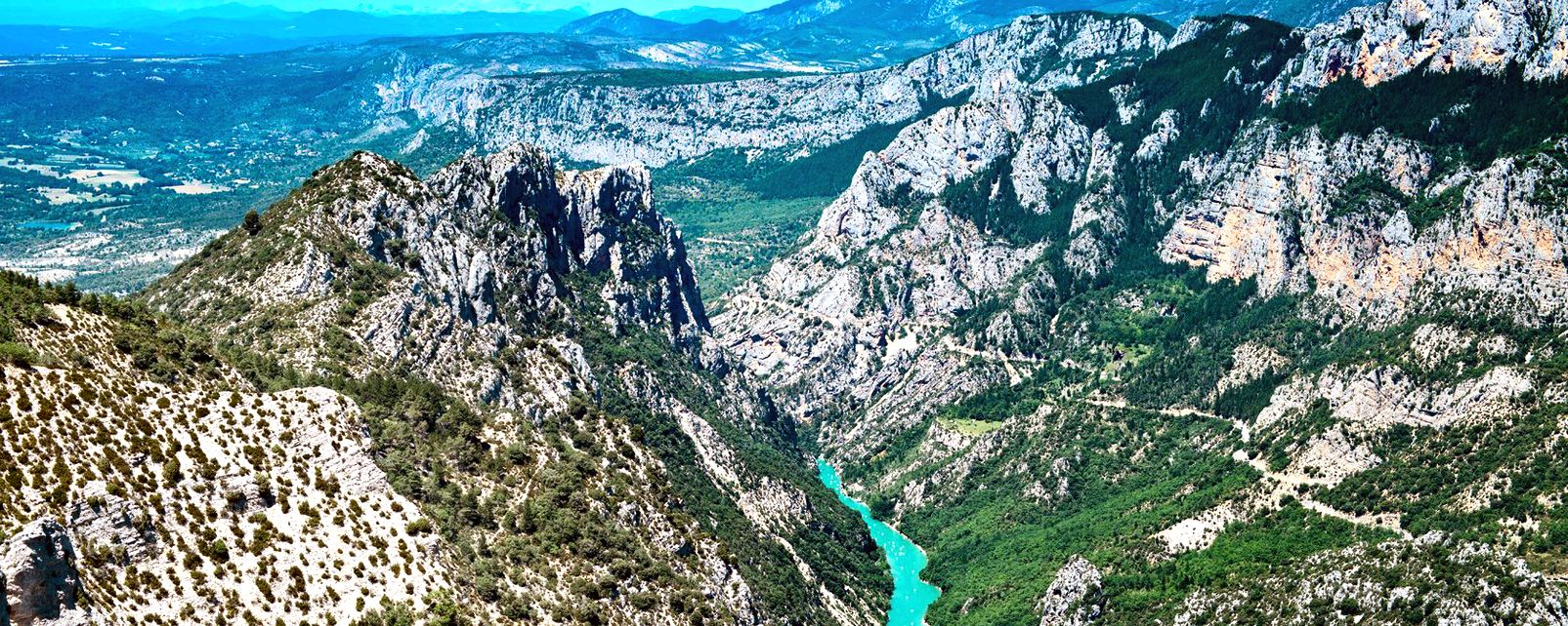 Les Gorges du Verdon, La faune et la flore, Frejus, Provence Alpes Côte d'Azur