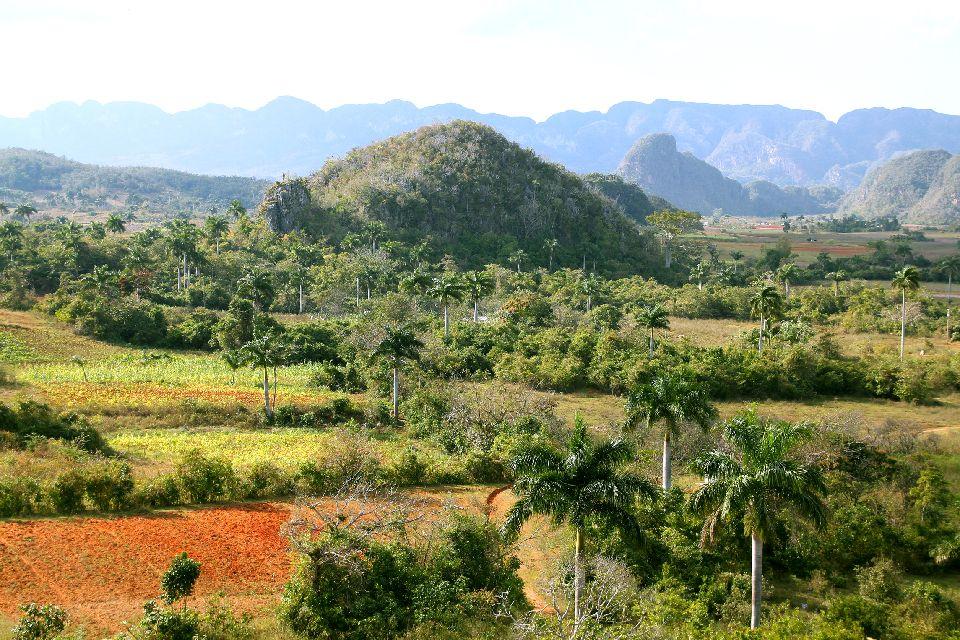 Les mogotes de Vinales , Cuba