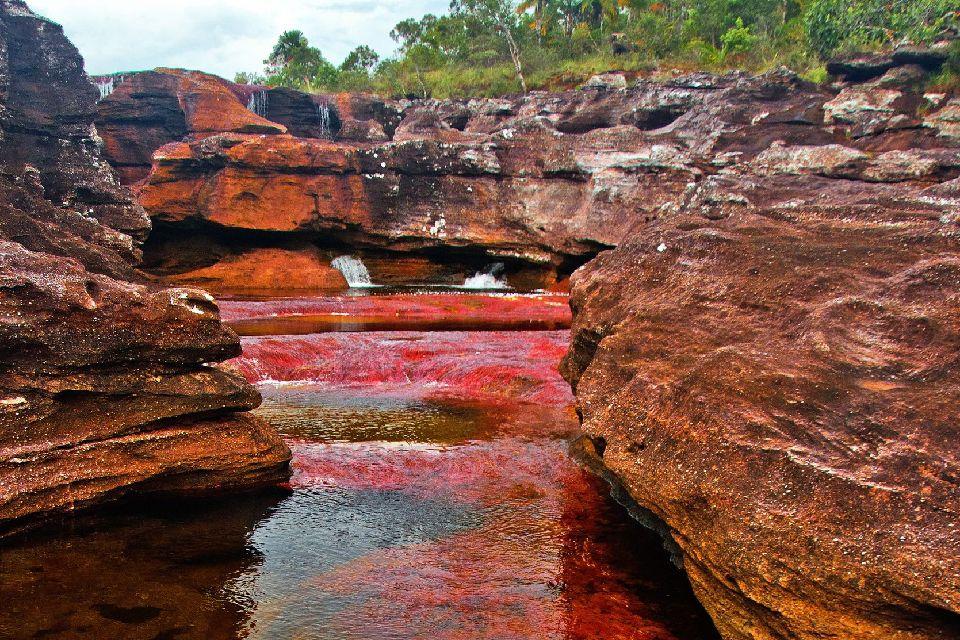 La rivière de Canos Cristales , Colombie