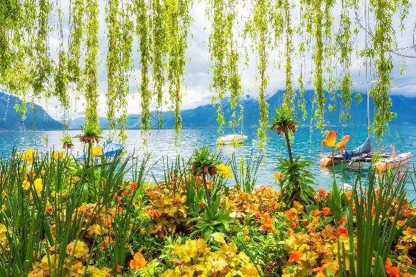 Le lac Léman , Suisse