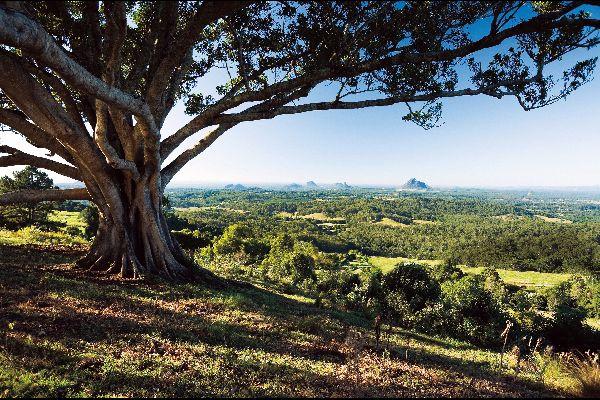 Les Glass House Mountains dans le Queensland , Australie