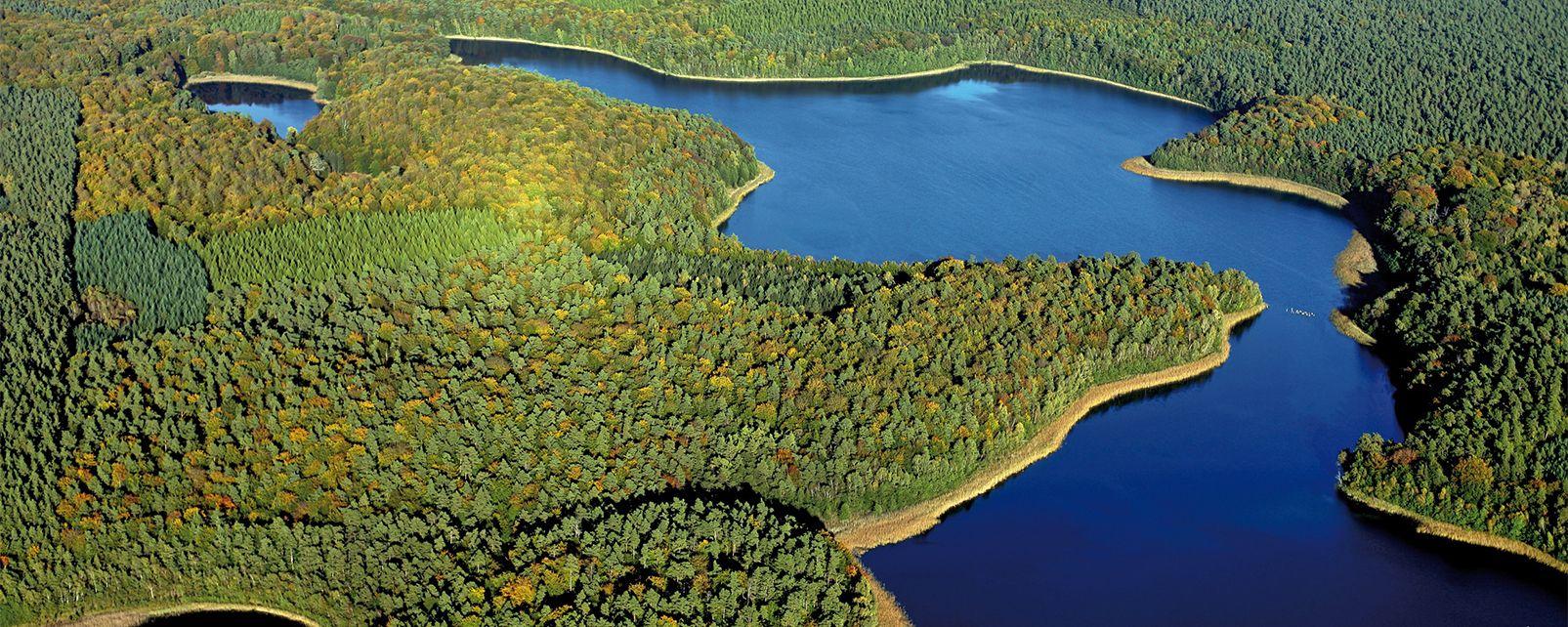 Le Parc national de la Müritz , Allemagne