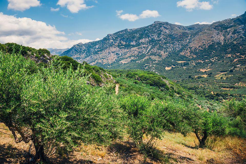 L'olivo, Creta, I massicci calcarei, I paesaggi, Creta
