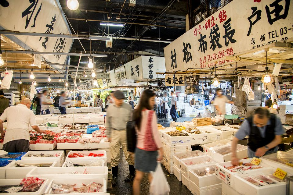TOKYO , Le marché aux poissons de Tsukiji , Japon