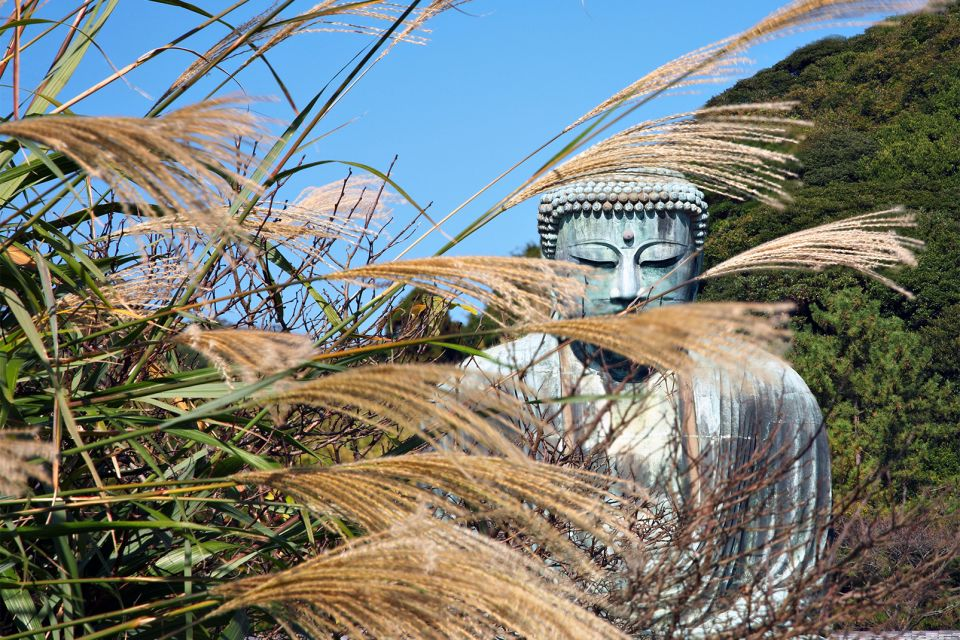 Le Grand Bouddha de Kamakura , Un site peu ménagé par dame nature , Japon
