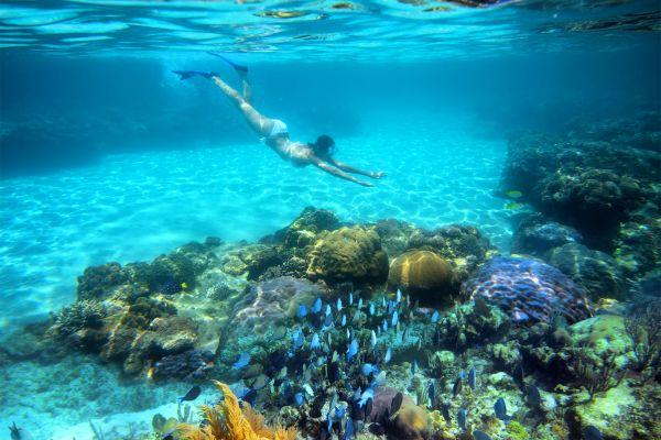 Australie, Queensland, océanie, mer, Frankland, Islands, iles, Frankland