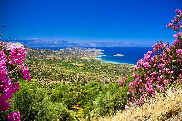 Eine blühende Landschaft, Die Pflanzenwelt, Die Fauna und Flora, Kreta