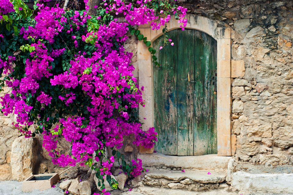 Flora , Una tierra, flores , Grecia