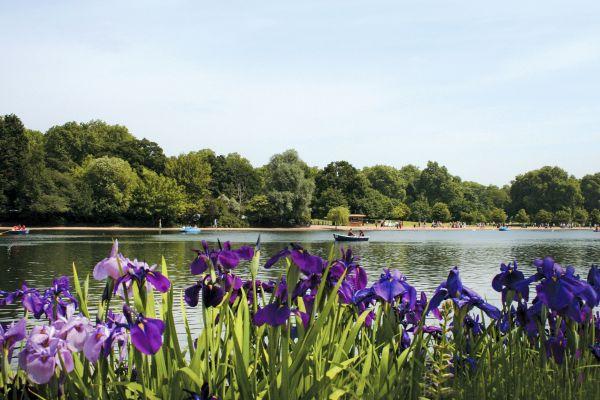 Les parcs naturels et jardins, Royaume-Uni Angleterre Londres jardin Kensington Hyde park parc lac barque