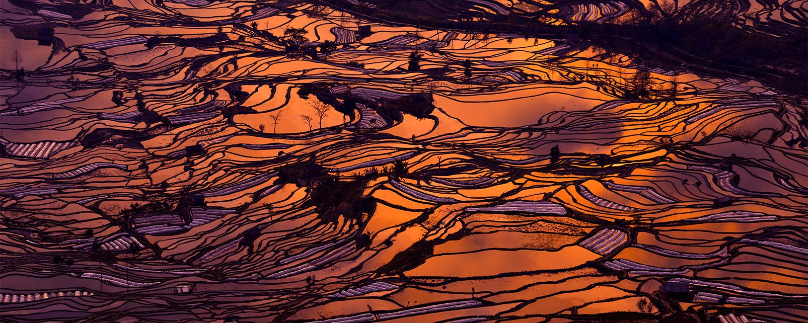 Les rizières des Hani de Honghe , Chine