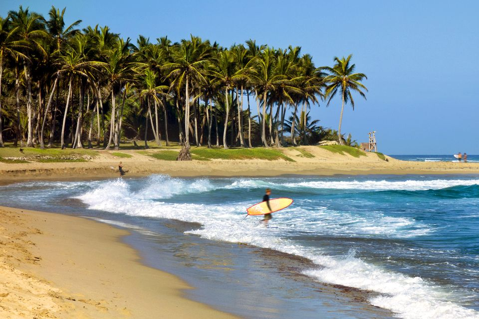 Les activités et les loisirs, Cabarete République Dominicaine Caraïbes surf palmiers sable mer océan planche de surf